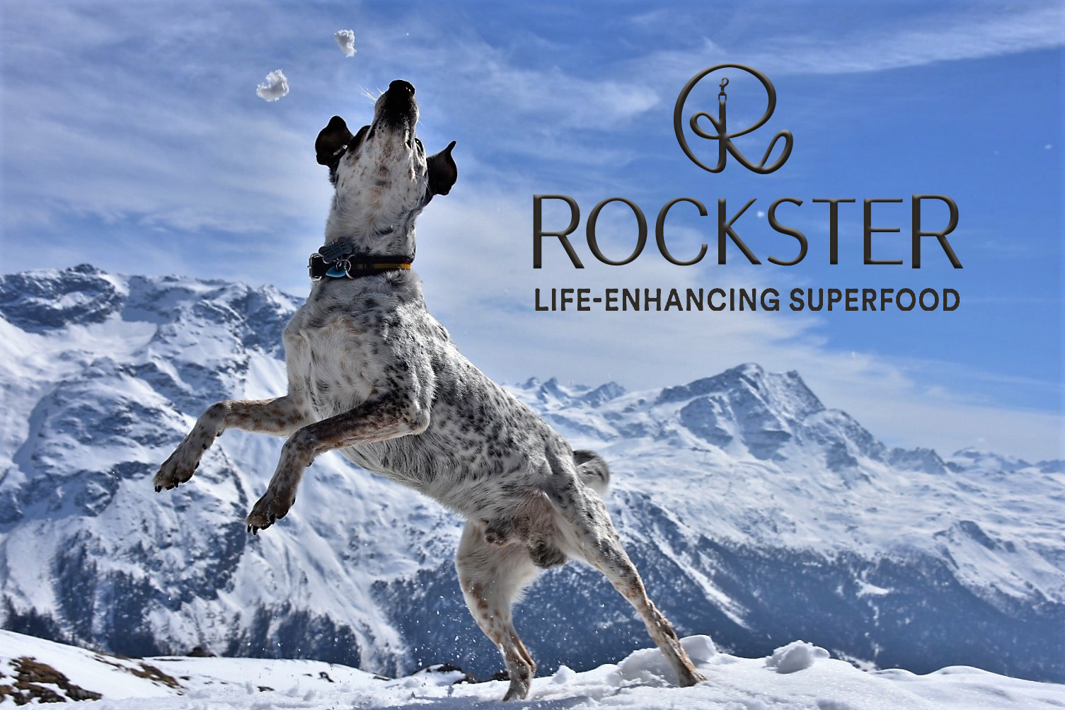Rockster-Jumping-with-logo.png
